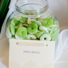 Our Wedding - Apple Rings