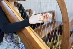 Our Wedding - Harpist