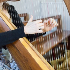 Our Wedding - Harpist
