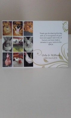 Our Wedding Favours - ISPCA - Our little pets