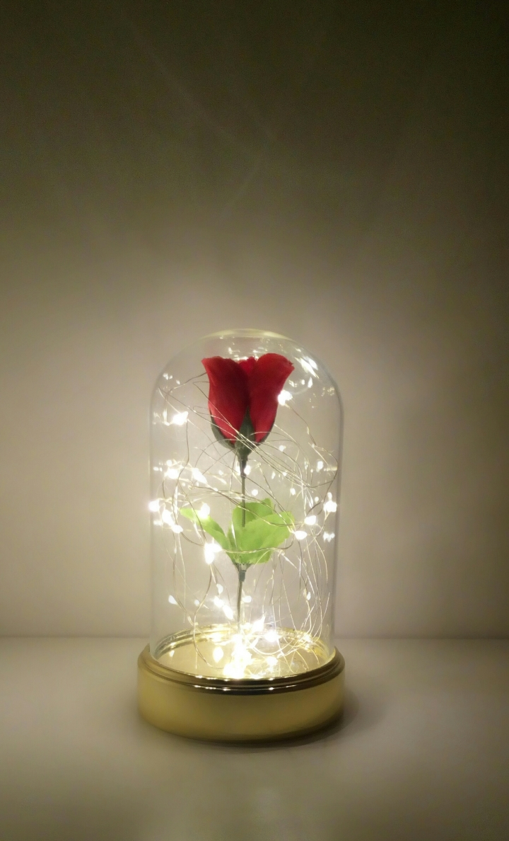 Diy enchanted rose from beauty and the beast occasions and delights when the beast was a human prince an old beggar woman came to his castle requesting shelter from the bitter cold and offered to him this very rose izmirmasajfo